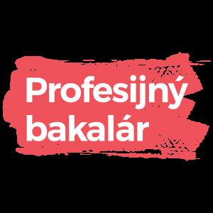 Profesijný Bakalár